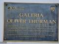 64-Galeria-Oliver-Thurman_Baia-Mare.jpg