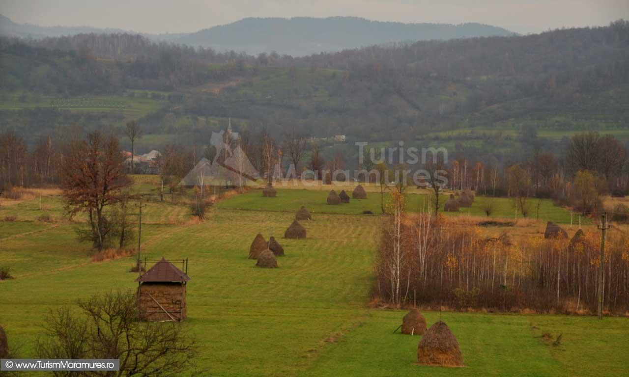07_Feresti_Valea-Cosaului