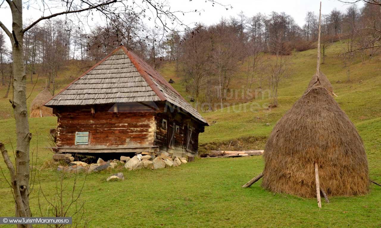 63_Valea-Cosaului-Budesti