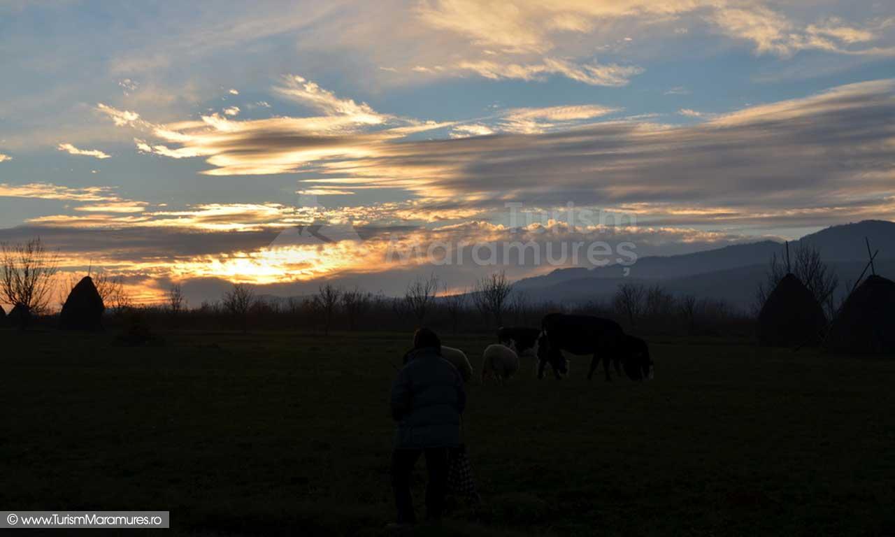77_Pastorala-in-amurg-Feresti