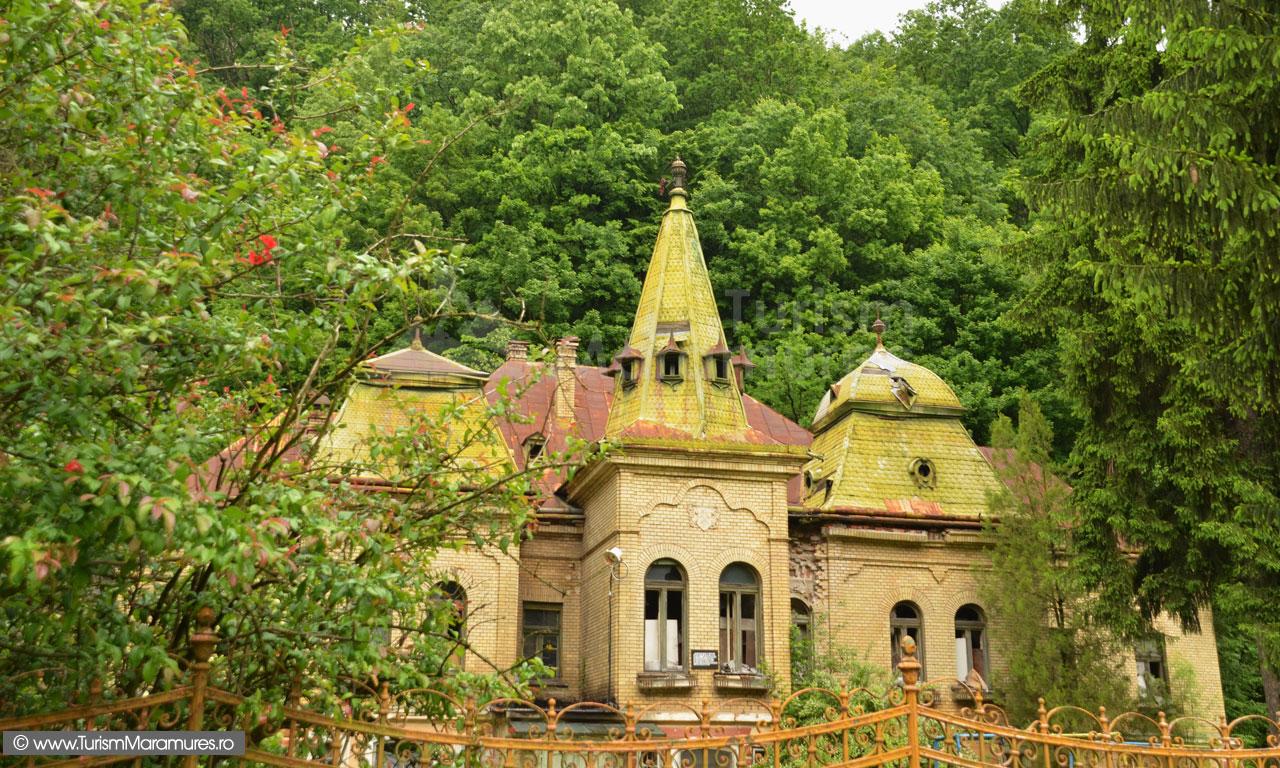 0018_Castelul-Alexiu-Pocol-de-Lozna-Mare
