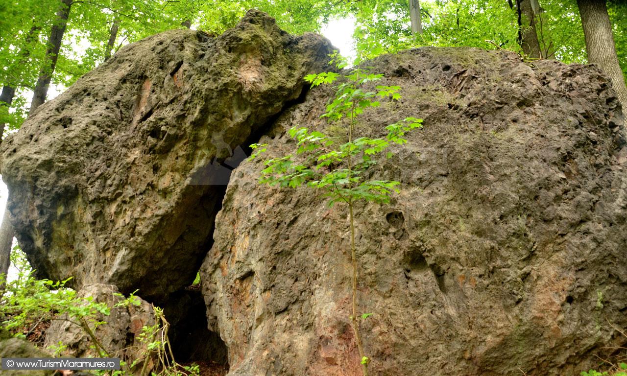 0100_Aglomerate-vulcanice-pe-varful-Elena