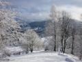 08-Iarna-sub-Plestioara