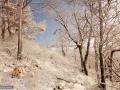 13-Poca-iarna-feerie-alba