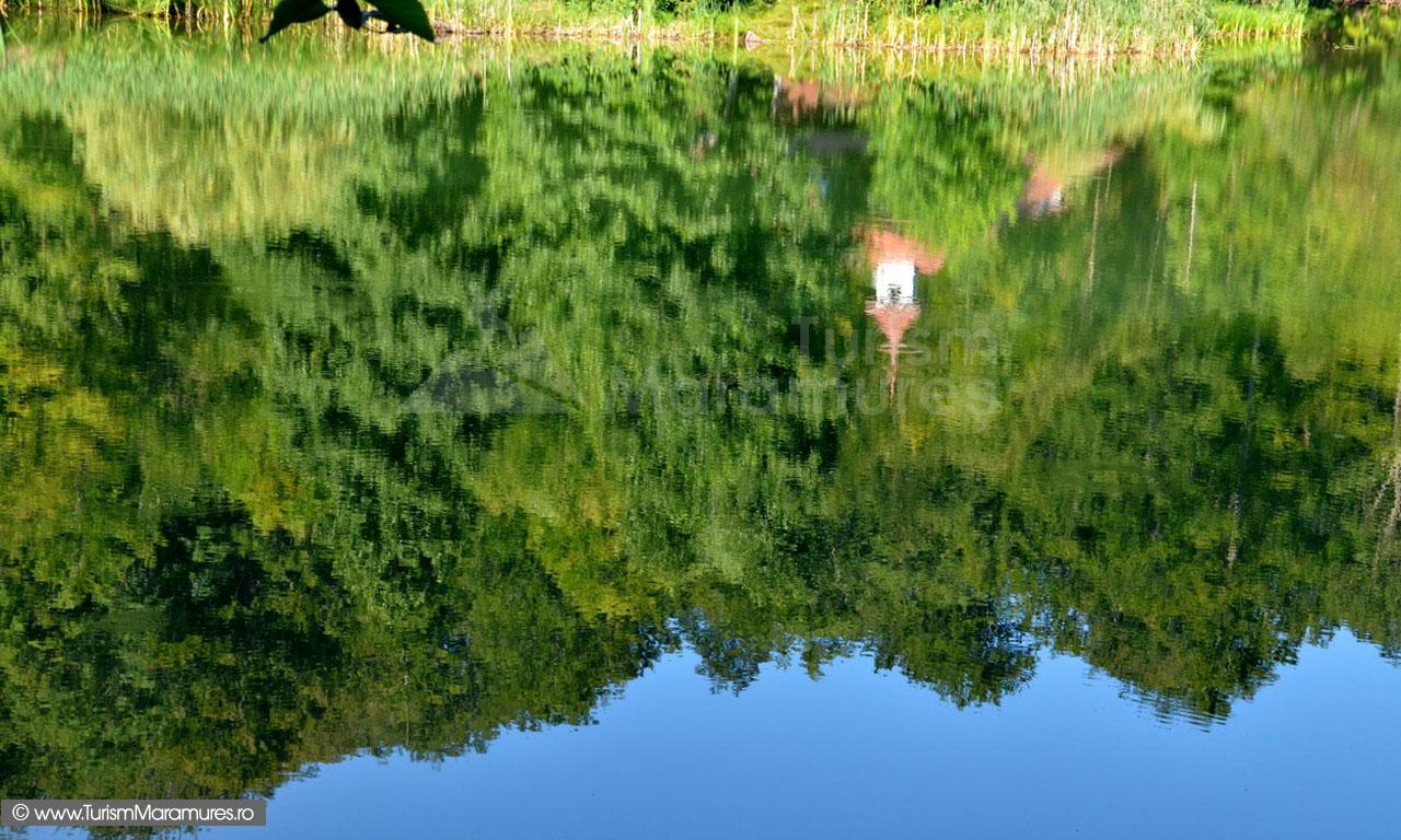 30_Lacul-Mogosa-reflexe