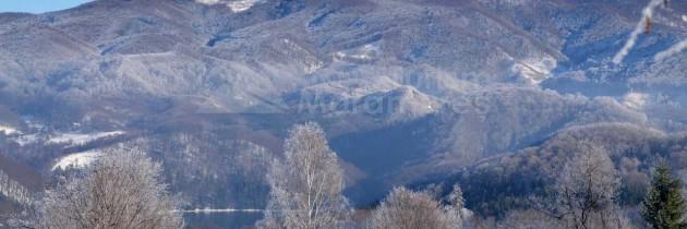 Munții Igniș (Firiza): Baraj Firiza – Plestioara – Șaua Dia – Poiana Văratici