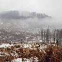 Munții Lăpușului (Băiuț): Pe Piatra Prislopului