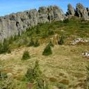 Munții Gutâi: În Rezervația Naturală Creasta Cocoșului, prin Pasul Gutâi