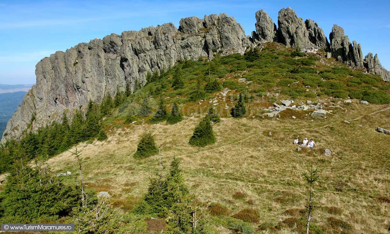 Creasta Cocoșului - Traseu turistic Munții Gutâi: În Rezervația Naturală Creasta Cocoșului, prin Pasul Gutâi
