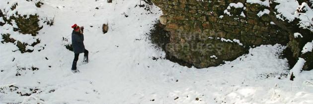 Seini: Pe Dealul Comja (Comșa), la Eminescu prin Racșa, Țara Oașului