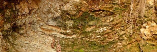 Baia Mare: Din Valea Borcutului, peste vârful Iricău şi Culmea Morgău la Grota Tâlharului