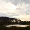 Tăuții Măgherăuș (Nistru): Lacul Nistru