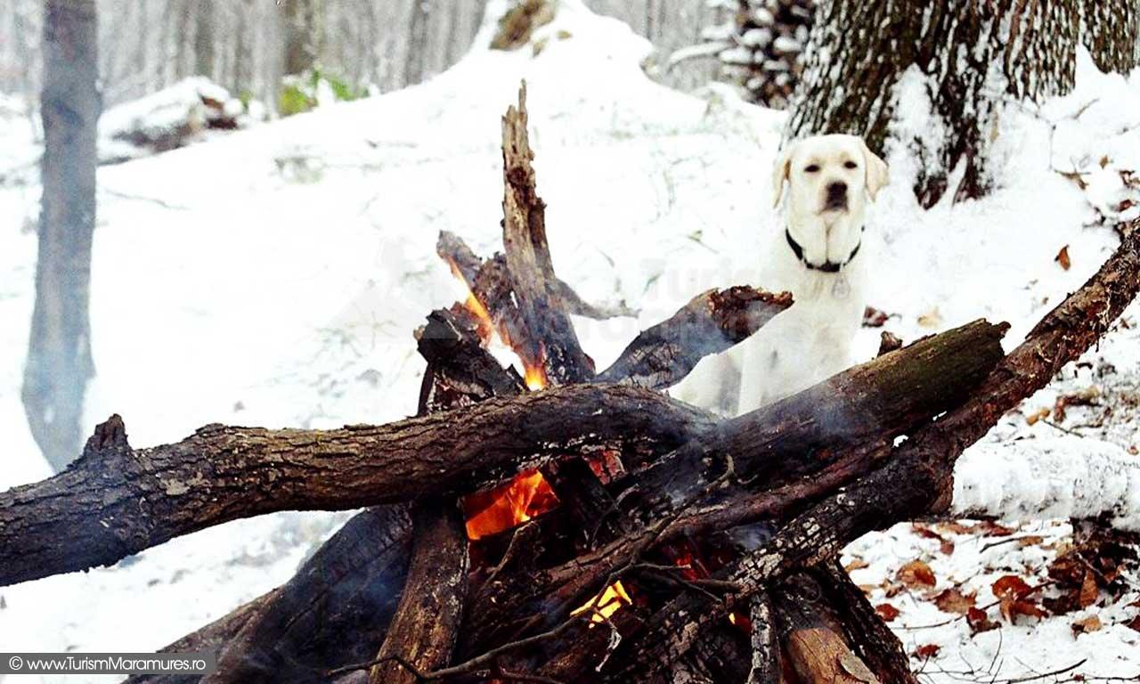 Popas cu foc de tabara, iarna