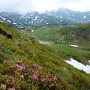 Munții Rodnei (Borșa): Valea Negoiescu – Curmatura Galațului – valea Rea