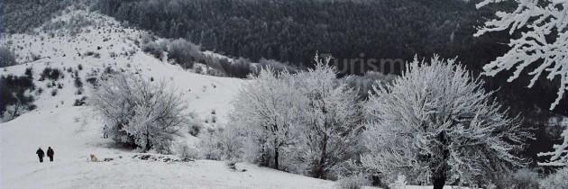 Țara Chioarului: Vărai – Durușa – Cornu Pleșii