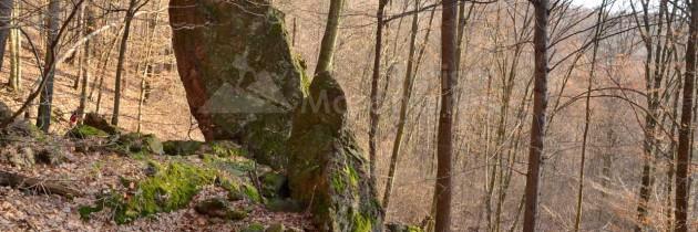 Baia Mare (Valea Borcutului): Pe stâncăriile ruiniforme ale Țighierului