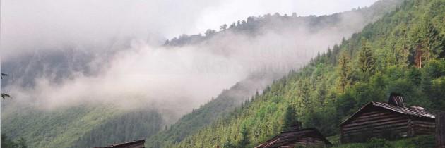 Poienile de sub Munte: La Piatra Socolăului din  Parcul Natural Munții Maramureșului