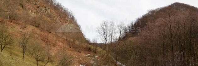 Fisculaş (Dăneşti): Cheile Dăneşti de pe valea Izvorul Bulzului – Blidiriştea – Dealul Tieiului – sculpturile din Negreia