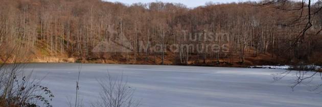 Baia Mare: Din Ferneziu la Lacul Bodi, cu retur pe Valea Vicleanu Mare