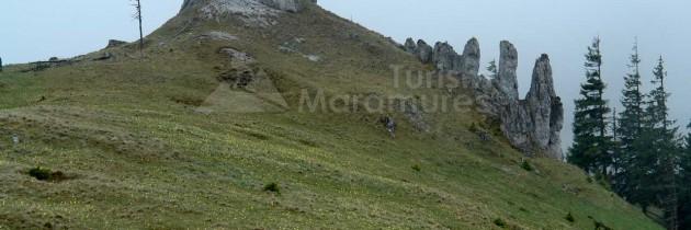 Parcul Natural Munţii Maramureşului: În Munții Țibău