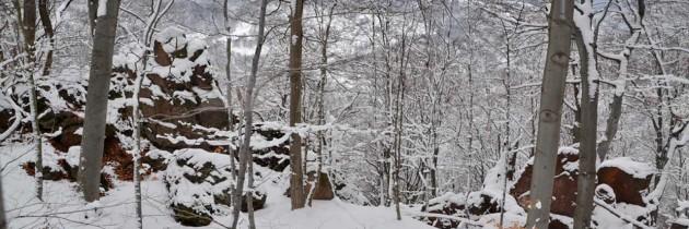 Munţii Igniş (Tăuţii Măgherăuş): Pe valea Nistru la Piatra Şoimului de Nistru