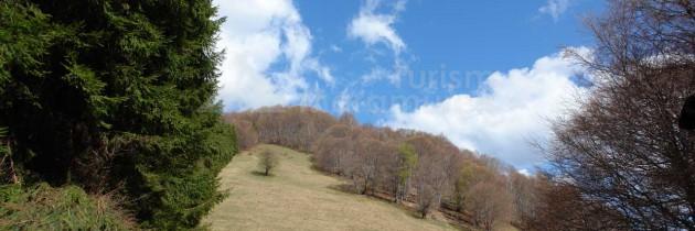 Munții Igniș (Firiza): Din Valea Romană, pe vârful Ostra și vârful Ulmoasa în Poiana Șeituri și pe valea Seicinii