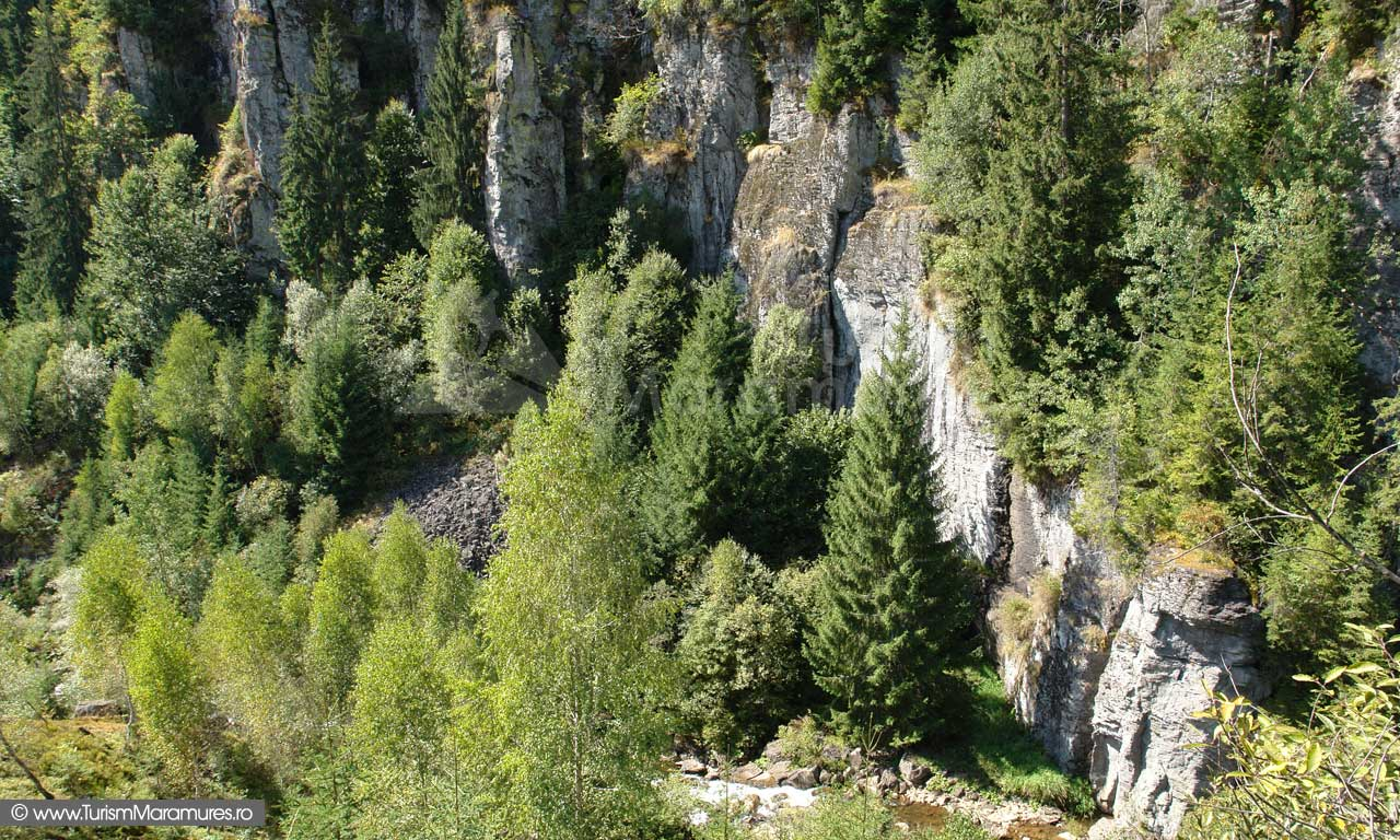 Cheile Tătarului Maramureș, Munții Igniș