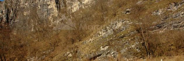 Defileul Lăpușului: Din Preluca Veche, pe Custura Pietrei, Custura Cetățelei și Piatra Cerbului
