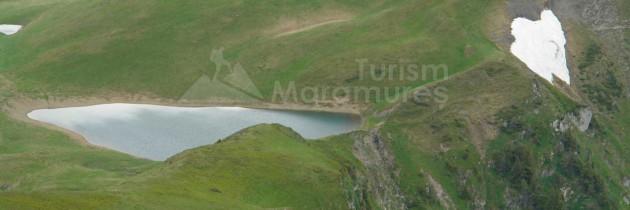 Parcul Natural Munții Maramureșului (Poienile de Sub Munte): Coșnea – Stânișoara – vârful Mihailec – Vârtopu Mare – Luhei