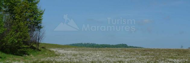 Maramureșul Istoric: Din Desești la Rezervația Iezerul Mare