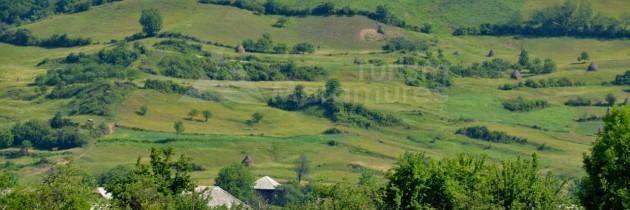 Țara Lăpușului: În Cufoaia, Rogoz, Libotin și Cupșeni, de Rusalii