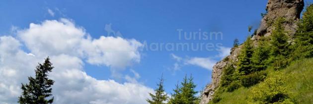 Munții Maramureșului: Din Borșa Fântâna prin Preluca Mărului şi Gruiul Lung pe vârful Cearcănu, Podu Cearcănului și valea Cercănel