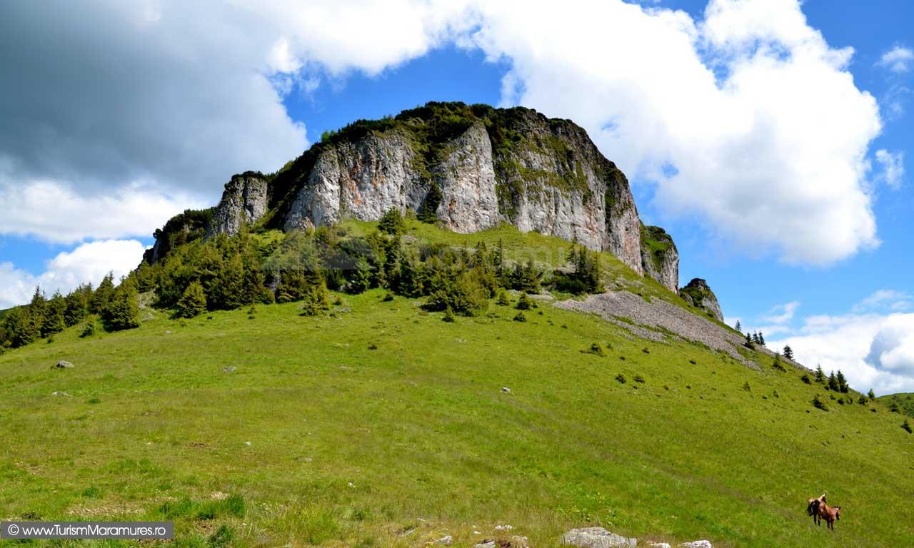 Muntii Maramuresului - Cearcanu