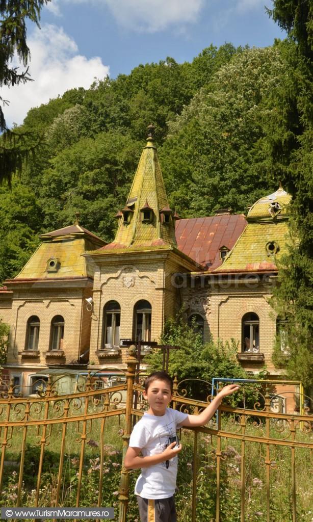 Castelul lui Pocol din Valea Borcutului