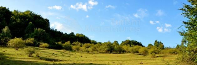 Defileul Lăpușului: Din Roșia, pe Dealul Pietranu și Pădurea Mesig, spre Împreunături