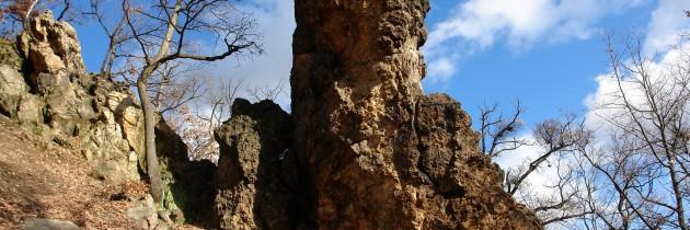 Trasee turistice Baia Mare: Măgura Băii – Valea Lungă – Valea Roșie
