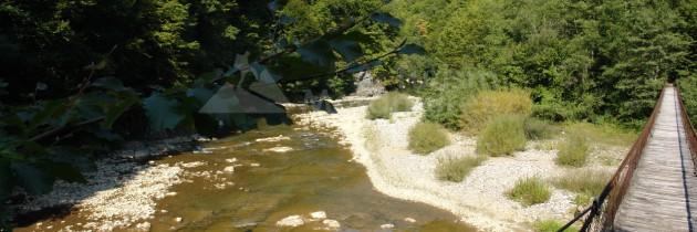 Defileul Lăpușului: Dealu Corbului – Piatra Ciutei – valea Gâdelui – Scărița Asprei