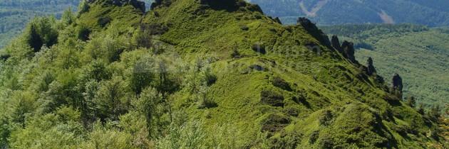 Munții Gutâi: Din Pasul Neteda pe Trei Apostoli sau Gutâiul Mic