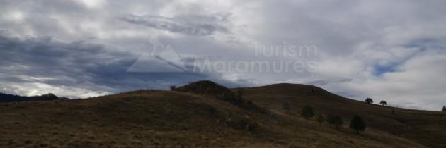 În Munții Lăpușului, pe vârful Sâva