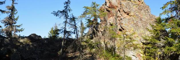 În Munții Lăpușului, pe vârful Sermetieș