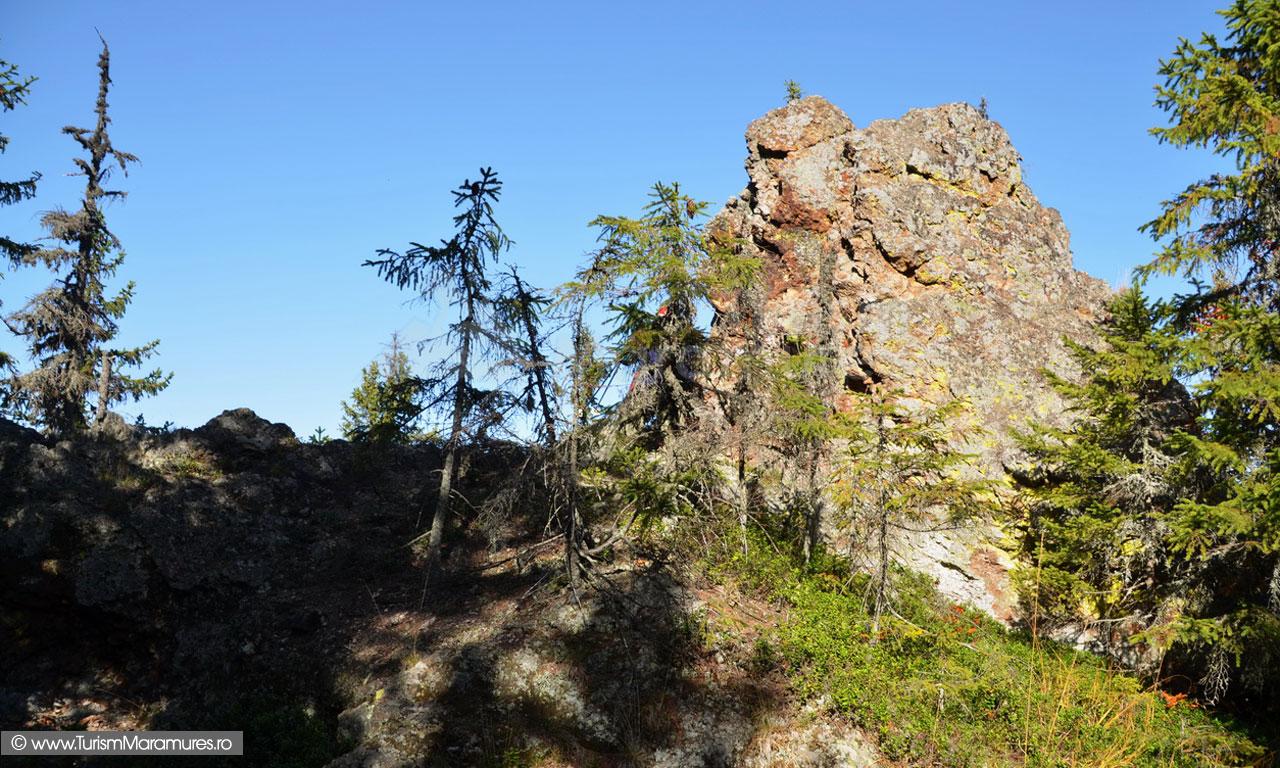 Varful Sermeties, Munții Lăpușului