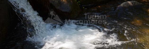 Munții Igniș: Cascadele văii Sturului – Poiana lui Dumitru – vârful Pleșca