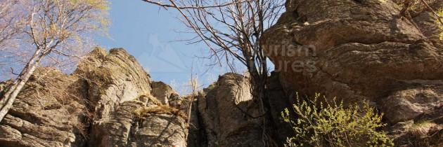 Munții Igniș: Ignișul de la N spre V