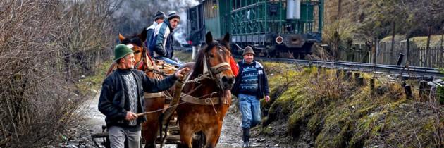Fotografie de pe Valea Vaserului, în topul celor mai bune 25 de fotografii de călătorie din 2014 realizat de CNN