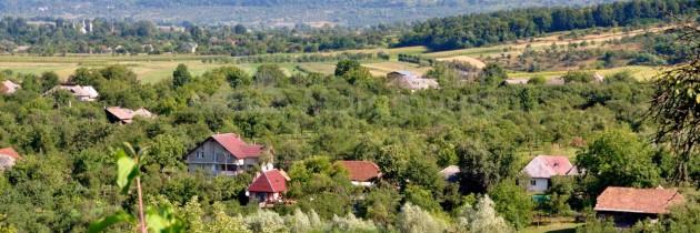 În debut de august prin Coaș, la râul Cavnic și Întrerâuri