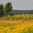Duminică de august în Coruia, pe malul râului Lăpuș