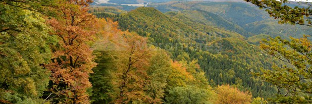 Din Valea Neagră pe vârful Breze
