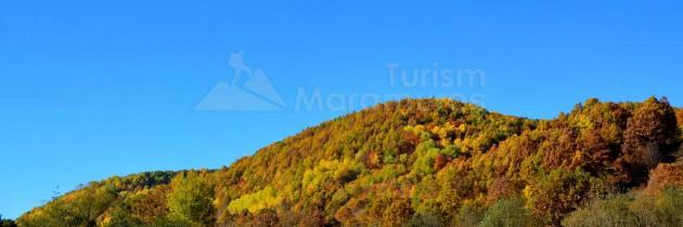 Toamna prin Fisculaș și pe Valea Cosăului