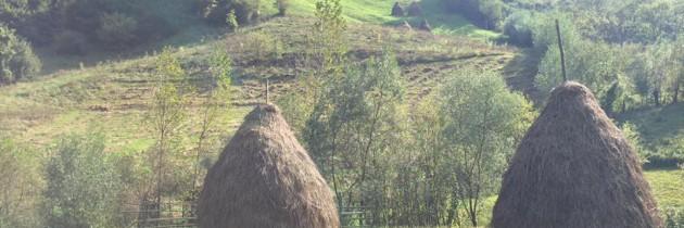Un bucureștean care străbate pe jos România a ajuns în Maramureș