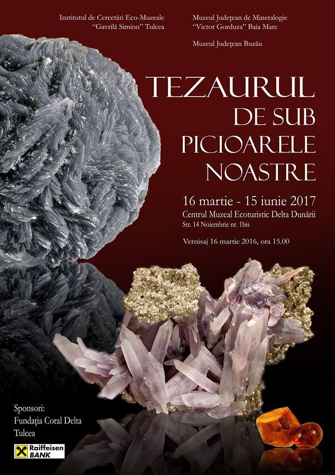 Afis expozitie flori de mina Tulcea